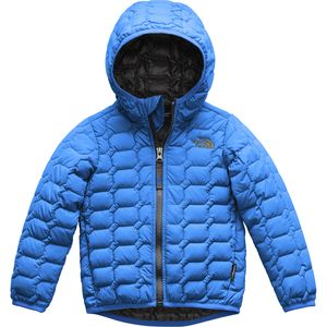 ThermoBall Hooded Insulated Jacket - Toddler Boys' Turkish Sea, 2T - Excellent
