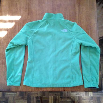 The North Face Windwall I Fleece Jacket