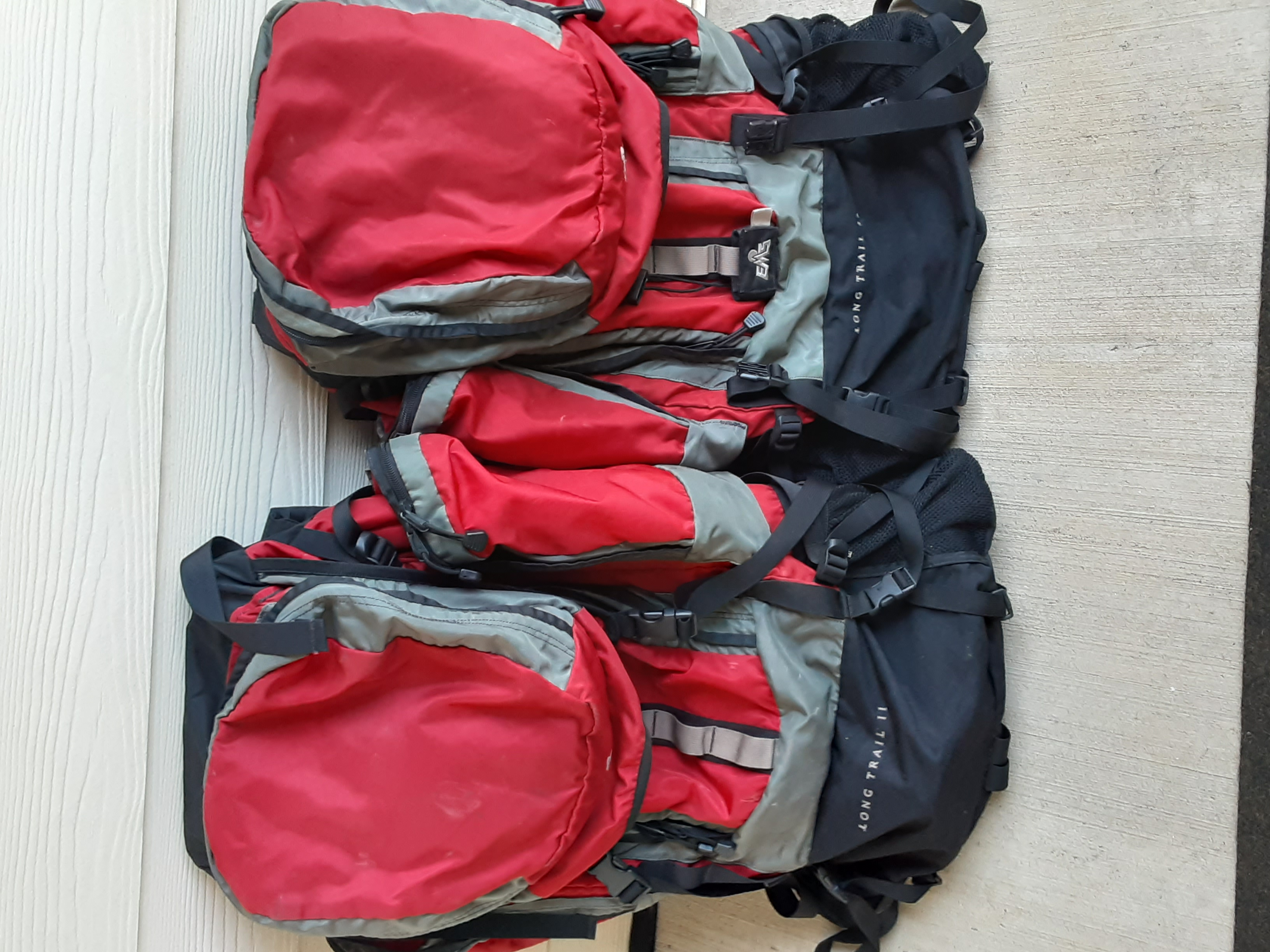 Eastern Mountain Sports (EMS) Expedition Backpack