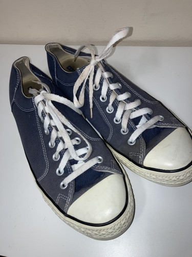 Converse Adult