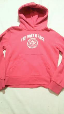 The North Face Half Dome Graphic Hoodie W's